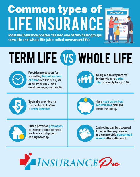 Common Types of life Insurance